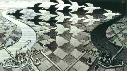 Forme fluide e luoghi inesplorati